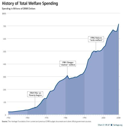 Means Tested Welfare Spending 1960-2008